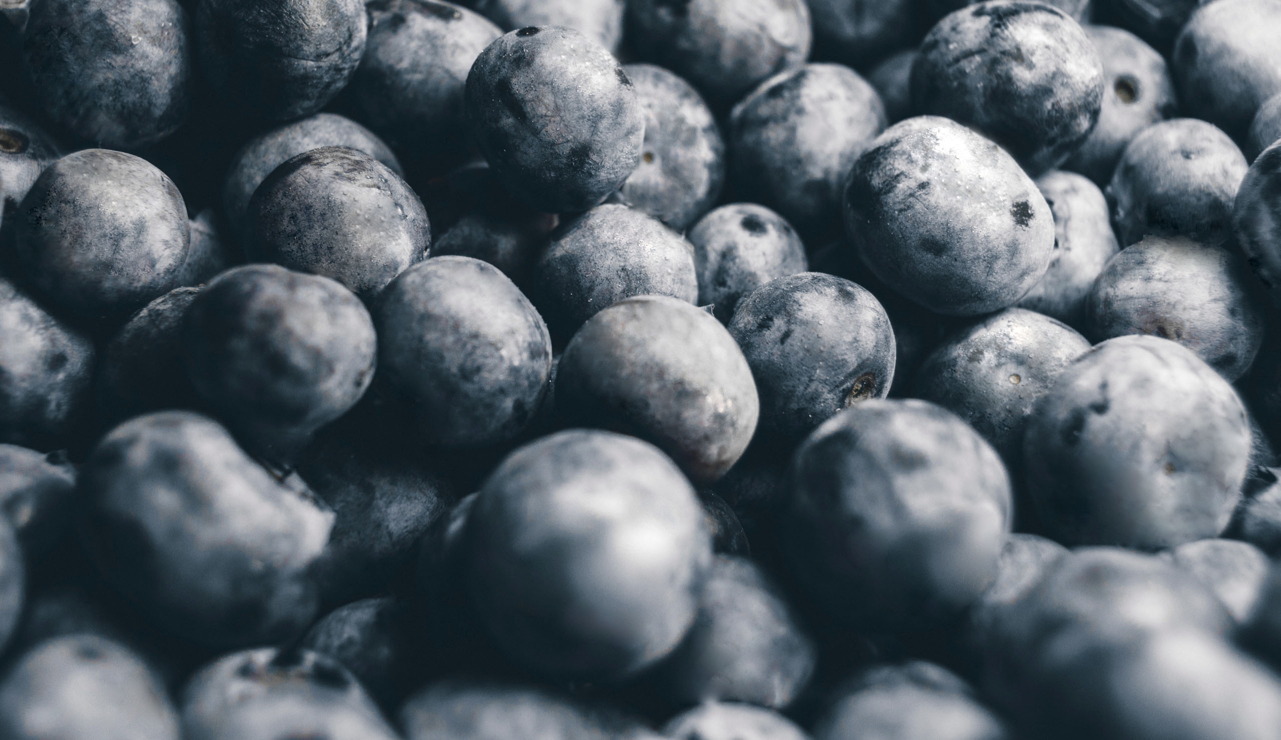 Slider pagina grapes